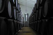 BODEGAS LAGAR BLANCO / Vinos Montilla Moriles. Tinaja, fino, oloroso, amontillado, palo cortado y Pedro Ximénez. www.lagarblanco.es