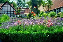 Ogrody / Niesamowite wiejskie i miejskie ogrody. Pachnące ziołami, kwiatami z leniwie płynącym czasem