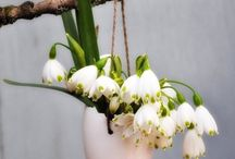 Wiosenne obrazki