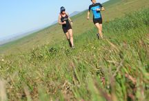 Darling Running Tour / Enjoy a morning of trail running, wine, olive, chocolate, and beer tasting in the village of Darling – an hour up the West coast from Cape Town.  In this collaboration with Darling Brew, you get to sample the very best that this quint village off the Cape West Coast has to offer.