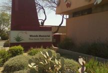 Tucson Public Libraries / Tucson Public Libraries - each library location in Tucson has designated times that they offer free homework help.  Homework help can be in person, by phone, or over the internet.  http://www.library.pima.gov/resource/homework-help-at-the-library/