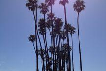 Goin' to Santa Barbara!