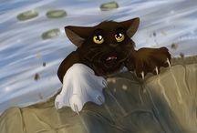 Warrior Cats!!!! Koci wojownicy!!!