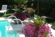 Gardening and landscaping ideas / by Judy Fetsch