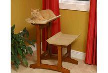 Designer Cat Furniture