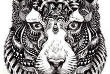 Animal Illustrations / by Beth Power