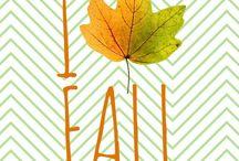My Fall Edit