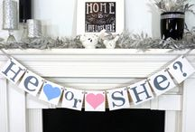 Baby Shower / First Party Inspiration