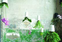 Sky Planter - boskke / Das Sky Planter Design rückt Altbekanntes in ein neues Licht. Der Blumentopf upside down - For real!