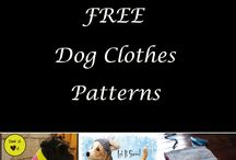 Dog clothes etc