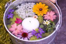Emmer bloemen