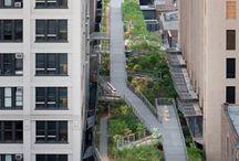 Urban Design & Landscape
