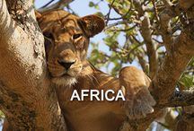 - Awesome Africa - / Discover Africa, the world's second-largest and second-most-populous continent..