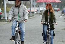Cycle Style