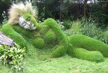 postaci z roślin / postaci z roślin