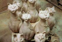 Katter / Allt om med katter!