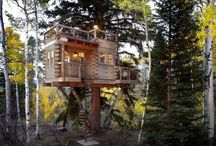 20 Cool Tree Houses même adultes Will Love