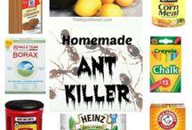 Pest killers