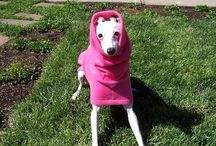 Italian Greyhound English Style Fleece Dog Coats / Italian Greyhound English Style  Fleece Dog Coat. Fuchsia Pink Available in Single Layer or Double Layer Fleece.  Design with a Detachable hood with opening for collar and lead.