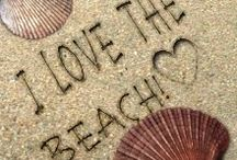 I Love the Beach / by Beth Bucher