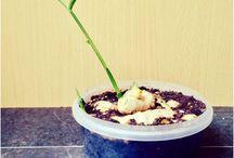 jak zrobić roślinkę :P ?