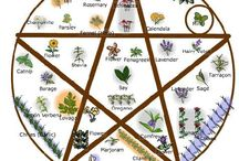 Magick - Herbs/Spices/Plants / Magick, Herbs, Spices