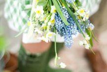 Hello Spring! / springtime