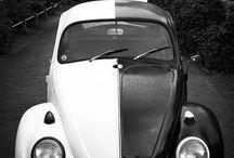 Black and White / Zwart en Wit