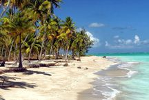 Beach and seashore