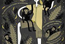 Non-human Primates - Evolution, Characteristics and Activities