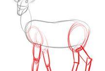 Desenhos e Ilustrações • Drawings and illustrations