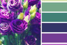 COLOR / palette / COLOR / palette