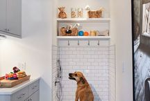 Dog wash room