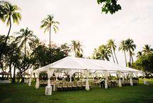 Perry Wedding / Wedding planning