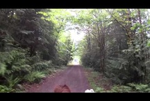 HCBC Helmet Cam!!! / Our Helmet Cam loaned out to horseback riders and drivers all over the province of BC.