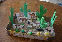 Desert habitat projects