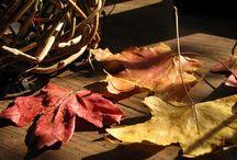 crafting: fall