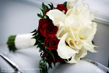 Bridal Bouquets/Boutineers / by Tammy Meche