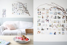 An Attempt at Decoration / by Coleen Thompson