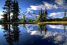 USA Nortwest Mt. Rainer