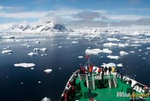 Antarctica / Perhaps not the most thought about travel destination in the world, but certainly one of the most epic.