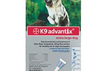 Online Pet Medication - CanadaVetExpress / CanadaVetExpress is trusted online seller of diverse pet care treatments for cats, dogs and birds. Our product range consists of popular brands of flea and tick treatments, heartwormers, wormers and joint care treatments. Our aim is to facilitate pet parents by minimizing their pet care budget. We achieve this by offering authentic treatments at least prices. Check our products for best treatments and preventives for your pets.