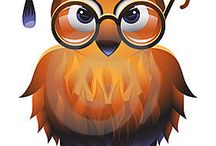 gufi / owl