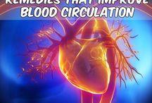 Health- Blood Circulation