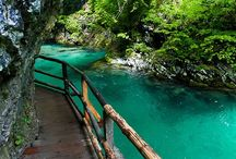 Slovénia Blad