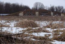 Natural homes in Michigan