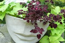 planters, greenwichhouse, landscaping