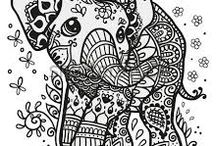 Coloring pages kids/adults