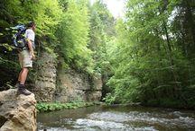 Duitsland: Zwarte Woud / Het grootste middelgebergte in Duitsland, is het Zwarte Woud. Dit woud dankt zijn naam aan de donkere naaldbomen en omdat het zo dicht bebost is. Het Zwarte Woud grenst aan de ene kant aan Frankrijk en aan de andere kant aan de Rijn. Er zijn veel oude dorpen te vinden, met pittoreske stadcentra. De glooiende groene heuvels van het Zwarte Woud zijn al tijden een populaire vakantiebestemming. Lees meer over het Zwarte Woud: http://www.indebergen.nl/vakantie/duitsland/zwarte-woud/