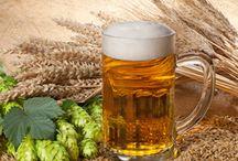Bierbrouwer voor een dag / Nieuw! Het arrangement 'Bierbrouwer voor een dag'